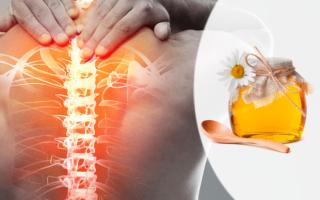 Медовый массаж при остеохондрозе шеи и спины