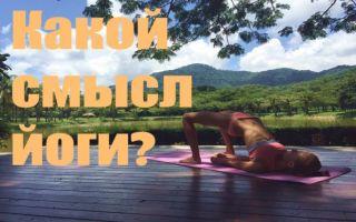 Философия йогического учения