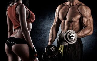 Тренировки с гантелями: создаем красивое тело в домашних условиях