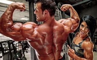 Дельтовидные мышцы: выбор комплекса упражнений для каждой из 3-х групп