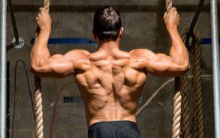 Подборка лучших упражнений для спины в домашних условиях
