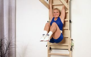 Виды упражнений на шведской стенке