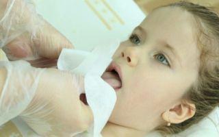 Проведение логопедического массажа языка и губ в домашних условиях