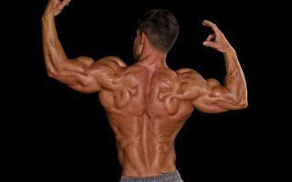 Тренировка плеч в домашних условиях
