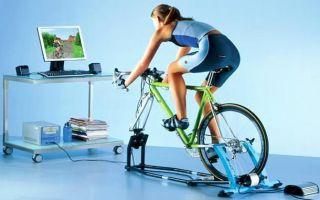 Какие мышцы работают при занятиях на велотренажере