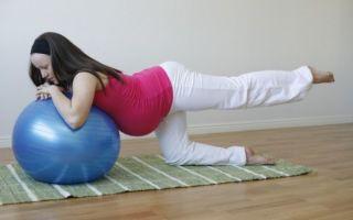Занятия для беременных с фитболом для укрепления мышц перед родами