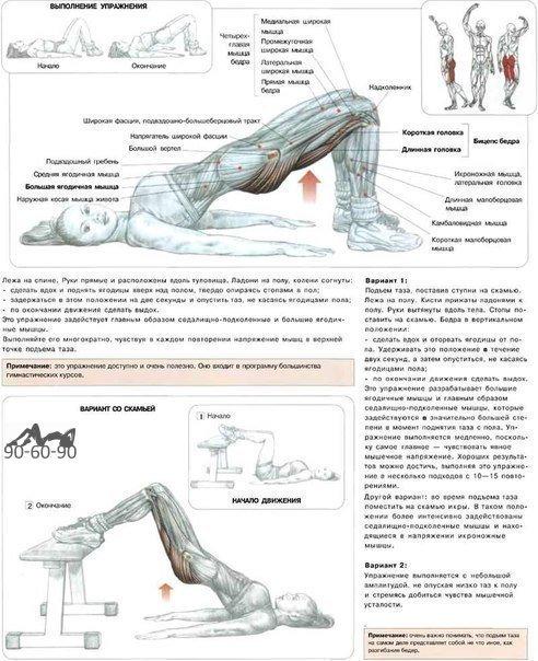 Упражнение на полу на ягодичные мышцы