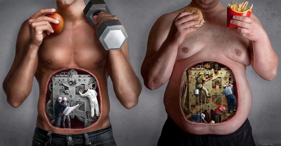 Правильное питание и спорт залог здоровье