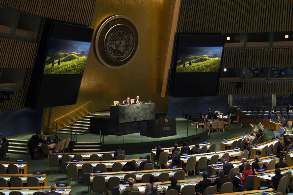 Обсуждение риса в ООН