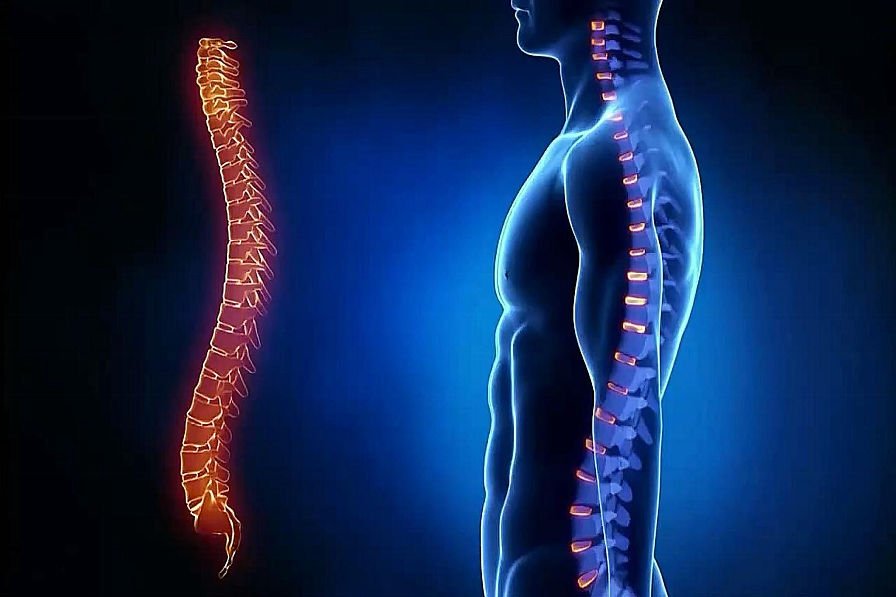 boli-v-spine3
