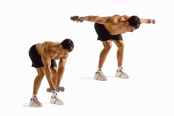 Упражнения для мышц спины: разведение рук в наклоне стоя