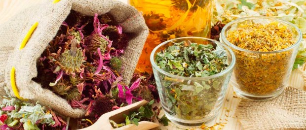 Отвары и чаи на основе трав для похудения