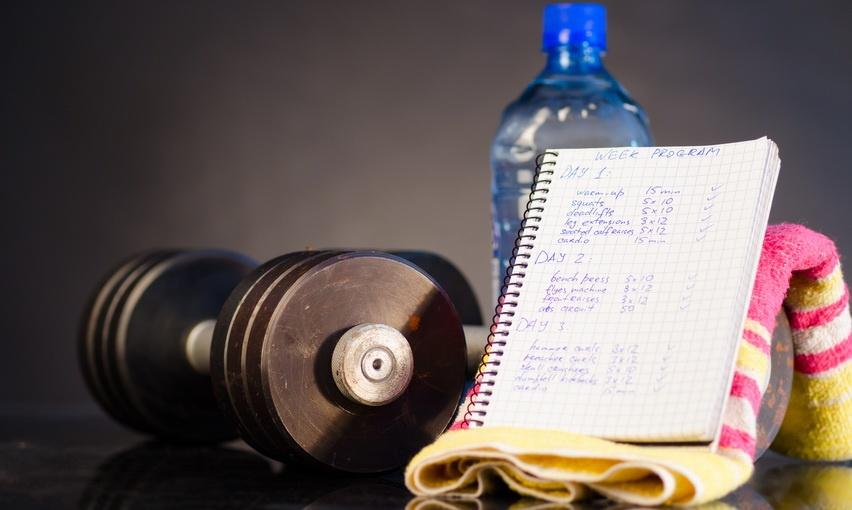 dnevnik-trenirovok