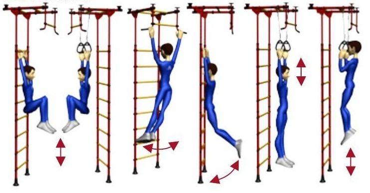 Упражнения для рук и спины