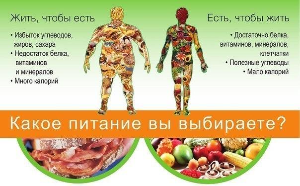Какой тип питания выбрать