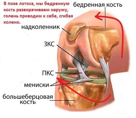 В дальнейшем применяют рентген сустава в нескольких проекциях, и подавить его другим образом не получается