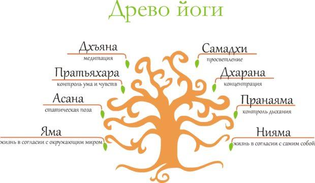 Дерево йоги Патанджали