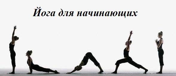 Йога для начинающих включает легкие асаны