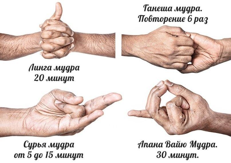 Мудра для лечения простатита и импотенции