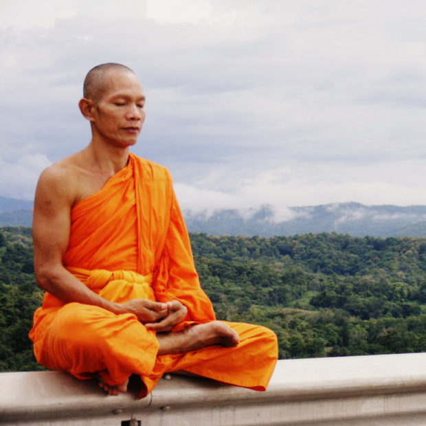 Лама в медитации - освбождении от ментального бытия