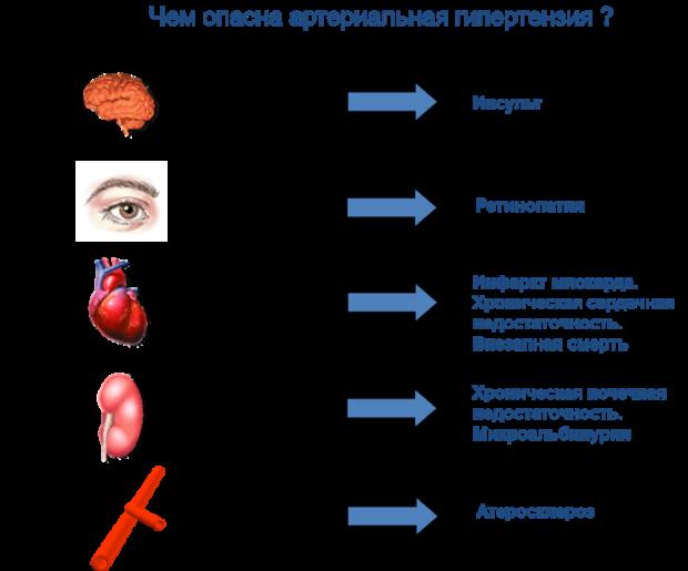 Опасность гипертонии для разных органов и систем
