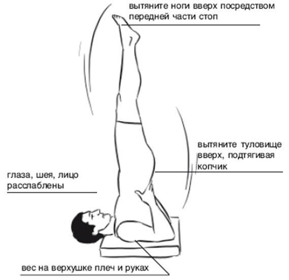Техника Сарвангасана