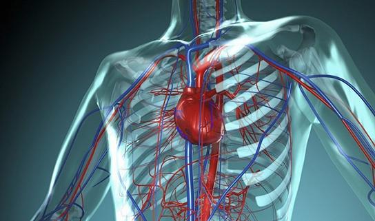 Калмыцкая йога оздоравливает сердце