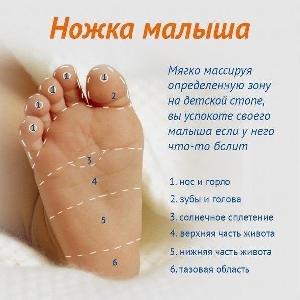 Ножка - массажные зоны
