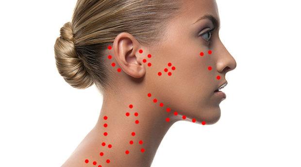 Лимфатические линии на лице и шее