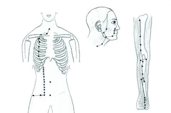 Меридианы на теле