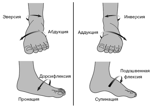 Визуальное определение вальгуса