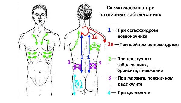 Схема массажных линий