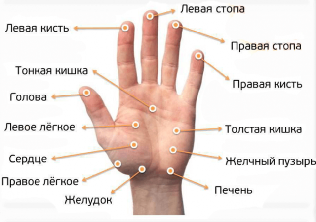 Массажные точки на руках